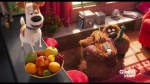 Movie reviews: The Secret Life of Pets, Last Cab to Darwin