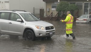 Raw: Cars stuck in Burnaby's Still Creek