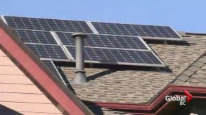 Surrey's solar panel red tape