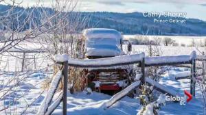 BC Evening Weather Forecast: Dec 7