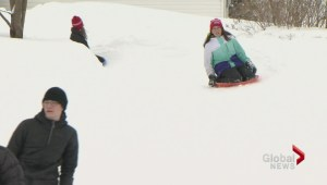 Family builds backyard luge track