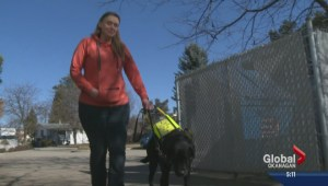 Blind Vernon woman fundraising for dying service dog