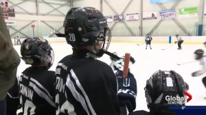 Researcher Examines Role of Sexuality in Hockey