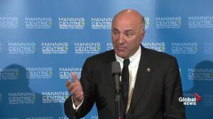 'I'm not Canada's Trump': Kevin O'Leary when asked about immigration