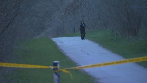 Human skull found in public park in Toronto's west end