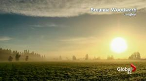 BC Evening Weather Forecast: Sep 12