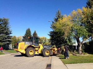 Snow storm cleanup enters new phase