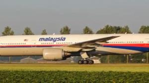 Malaysia Airlines Flight MH17 shot down, crashes in Ukraine