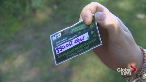 Marijuana scavenger hunt at High Park