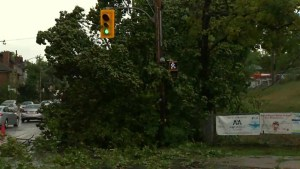 Saturday storms leave plenty of damage around the GTA