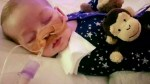 Charlie Gard life support withdrawn after lengthy legal health battle