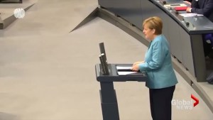Europe 'must do more' to fight climate change in absence of U.S. leadership: Merkel