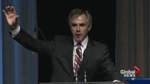 Albertans weigh in on Prentice's win as PC leader