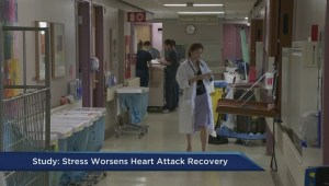 Impact of stress on post heart attack recovery