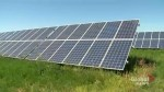 Southern Alberta farm uses solar energy to power irrigation pivots