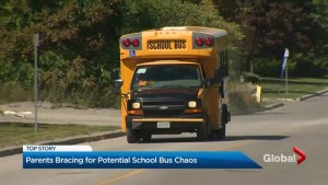 Province's watchdog slams Toronto's school boards over bus driver shortage