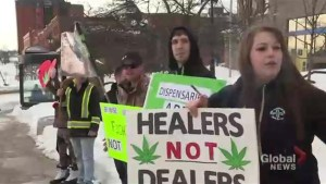 New Brunswickers gather in support of marijuana legalization