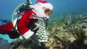 Santa scuba diving in Florida keys