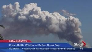 Delta Mayor Lois Jackson on the Burns Bog fire
