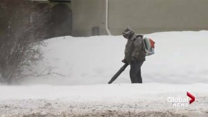 City of Calgary flooded by 311 calls for snow removal