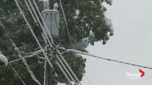 Calgary September Snow: Many still without power