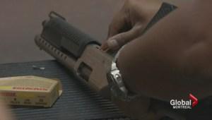 Government hands over gun registry