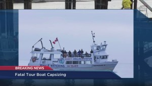 Whale watching accident: Incoming MP Gord Johns discusses the sinking of Leviathan II