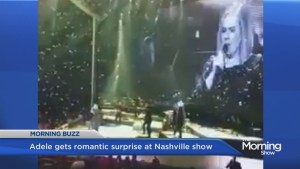 Adele gets romantic surprise at Nashville show