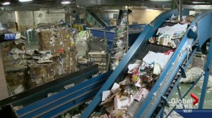 City council approves Cosmo for multi-unit recycling program