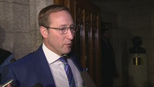 Peter MacKay says action is more important than inquiries