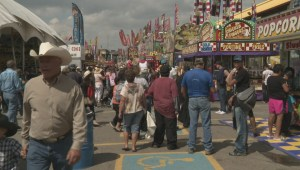 Some sun and free admission help draw a crowd for final day of Calgary Stampede