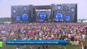 New safety policies introduced for Toronto's Veld Music Festival amid spike in drug overdoses