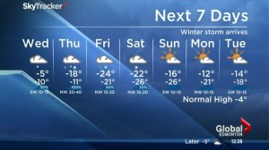 Edmonton Noon News weather forecast