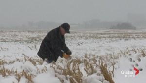 September snow has huge impact on rural areas