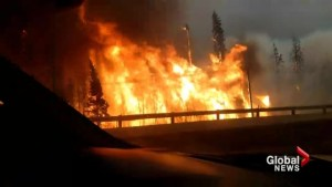 BC family describes escaping the Fort McMurray wildfire