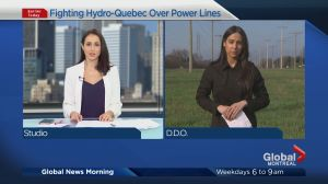 Opponents of DDO Hydro line considering legal action