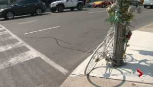Driver accused of fatal hit-and-run of Toronto cyclist has pleaded guilty