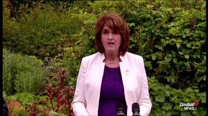 Irish labour party leader Joan Burton hails outcome of same-sex marriage