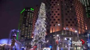 Is Montreal's Christmas tree pathetic?
