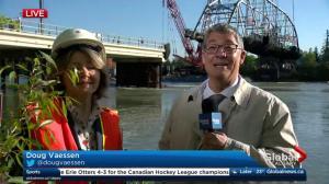 12 Street Zoo Bridge removal begins