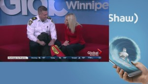 Adpot a Pal: Winnipeg Animal Services