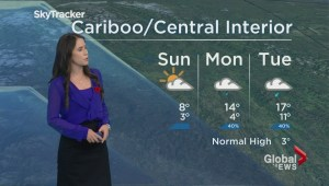 BC Evening Weather Forecast: Nov 5