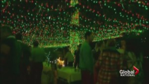 Homeowners use Christmas lights to raise money for charity