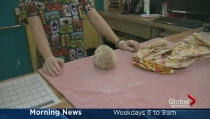 Adopt-A-Pet: Rambo the hedgehog