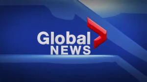 Global News at 5 Edmonton: Oct. 7