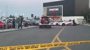 Man shot in parking lot of Sherway Gardens mall