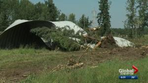 Central Alberta cleans up after wicked weather sweeps through