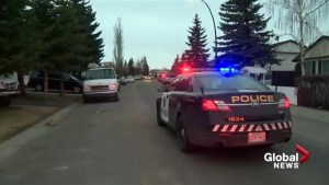 Calgary police investigate shooting in Falconridge