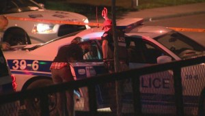 Raw Video: Montreal North stabbing