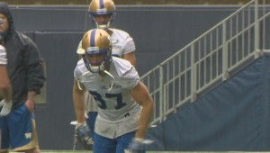 Highest amount of Manitobans playing for Winnipeg Blue Bombers in decades